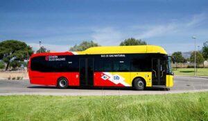transport publiczny majorka