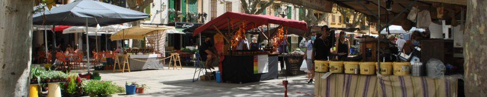 co zwiedzić na Majorce Majorka wakacje atrakcje na Majorce